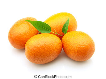 Sweet kumquat closeup