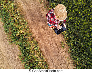 Female farmer using digital tablet computer in green wheat...