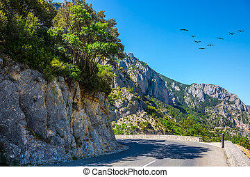 The road and migrating cranes - Turn of the mountain road....