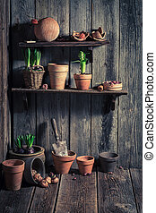 Old shed with old clay pots and gardening tools