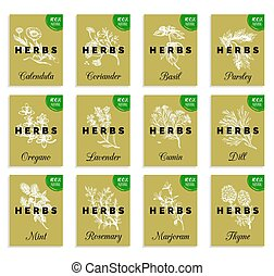 Herbs and spices cards set. Hand drawn medicinal, cosmetic plants collection. Engraving botanical illustrations tags.