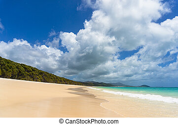 Whitehaven beach on Whitsunday island. Tropical paradise...