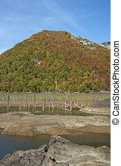Laguna Verde in Conguillio National Park - Autumn colours on...
