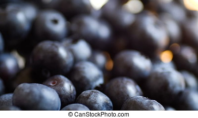 Fresh Blueberries closeup day light static footage.