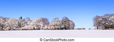 Snow panoramic landscape