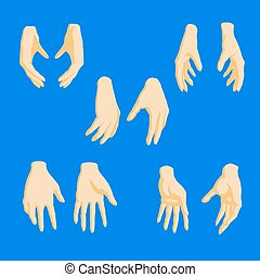 Set of cartoon-style girl hands in different positions