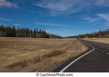 Empty Highway Through Colorful Fall Countryside in Arizona