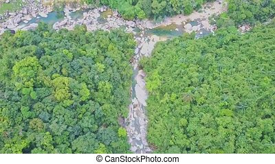 Flycam Approaches to Rocky Mountain River among Forest -...