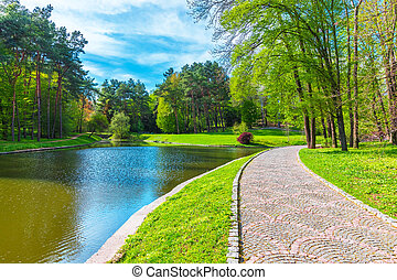 Summer scenery of the park alley with lake - Scenic summer...