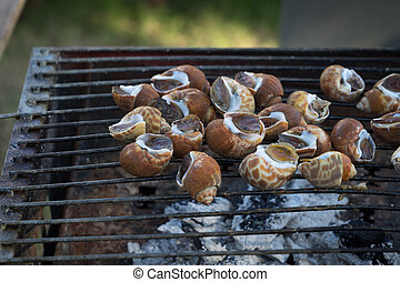 seafood spotted babylon food shell cuisine cook grill