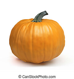 Pumpkin Isolated on White EPS 8 vector file included