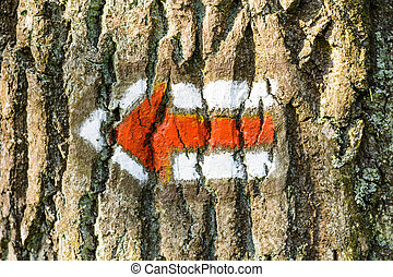 Red tourist sign on a tree trunk