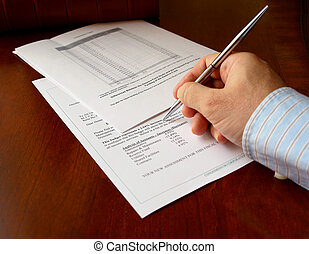 Hand and the budget document - male hand with pen on the...