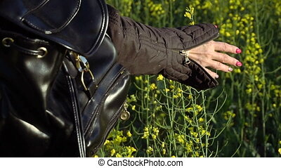 A girl takes a rape-flower hand. Slow motion - A girl...