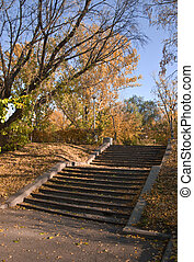 Stairs in a park in the fall. Falling leaves cover the ground. Against the blue sky. Autumn landscape