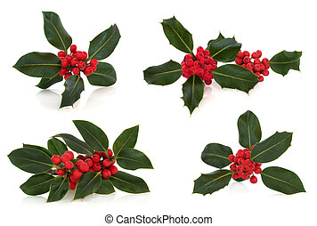 Holly Leaf and Berry Sprigs - Holly leaf sprig collection...