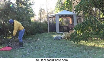 young man rake leaves in yard summerhouse in early morning....