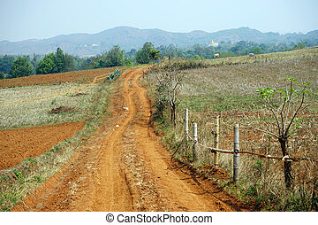 Dirt road and plowed land