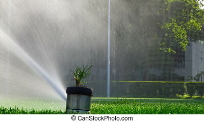 Soccer or football field irrigation system of automatic watering grass. With original sound.