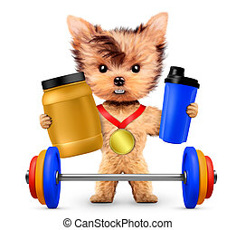 Funny dog holding sport nutrition and barbell. Concept of...