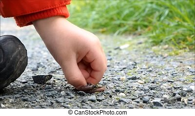 A child catching an earthworm by hand, on a gravel road,...