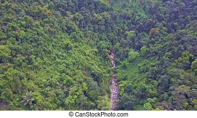 Drone Flies over Rocky Stream Running in Wild Jungle - drone...