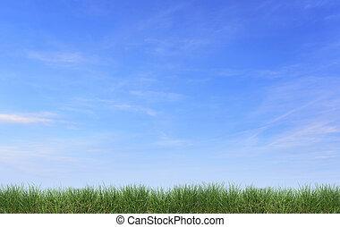 blauwe, gras, Vrijstaand, tegen, Hemel