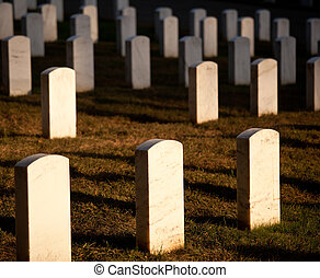 Row of grave stones in Arlington - Gravestones lit by the...