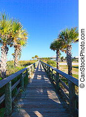 Beach Boardwalk - wooden Beach Boardwalk with palm trees and...