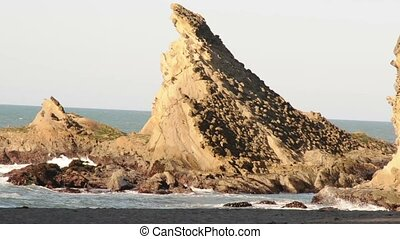 Sea Cliff - This is a large sea rock on the Oregon...