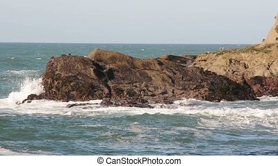 Sea rocks on the ocean shore with waves crashing against them