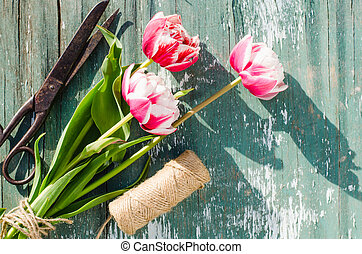 Tulips, scissors and twine on a wooden board.
