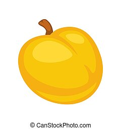 Small fresh apricot - Vector illustration of fresh ripe...