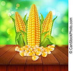 vector background with grains and cobs of corn on a wooden...