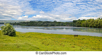 Plain river, meadow and floodplain forest on the shore.