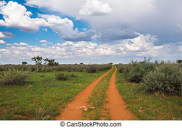 Dirty road in Kalahari desert