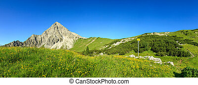Hiking on flower meadow and steep mountain. Signpost gives directions.