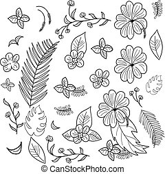 Hand drawn branches and leaves of tropical plants.