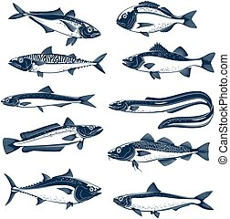 Sea fish icon set for seafood and fishing design