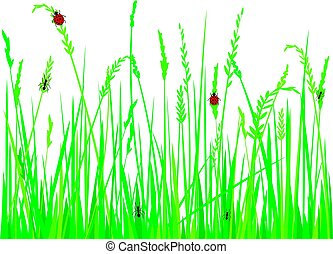 grass with ladybugs and ants vector illustration