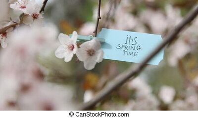 Its Spring Time concept. - Spring Time. Hand-lettering on...