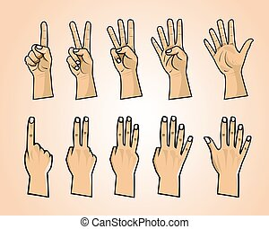 Set of numbers on the hands illustration