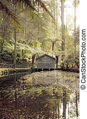 Boathouse Serenity - A remote boat house at the Alfred...