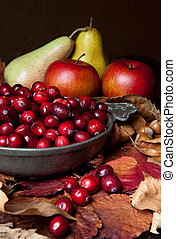 Apples and cranberries - Thanksgiving still-life with...