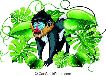 Baboon in green leaves illustration
