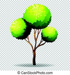Gree tree on transparent background illustration