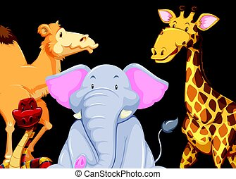Different kinds of animals on black background