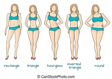 Female body figures, woman shapes, five types