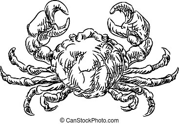 Crab Seafood Food Grunge Style Hand Drawn Icon - A crab...
