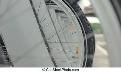Wheel bicycle in parking lot. Bicycle wheel in parking lot....